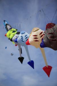 De Koog: Wind-Festival