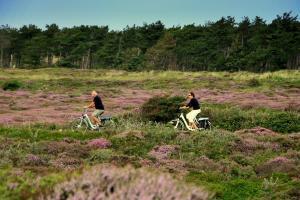 Radfahrer in der Heide (Foto: Marike Oostra)