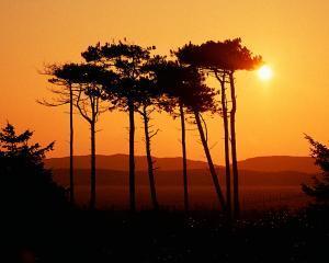Sonnenuntergang auf Texel (Foto: VVV)