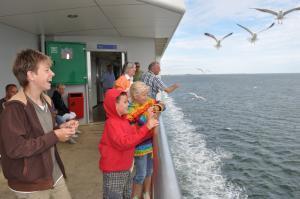 Anreise nach Texel: mit der Fähre in den Urlaub
